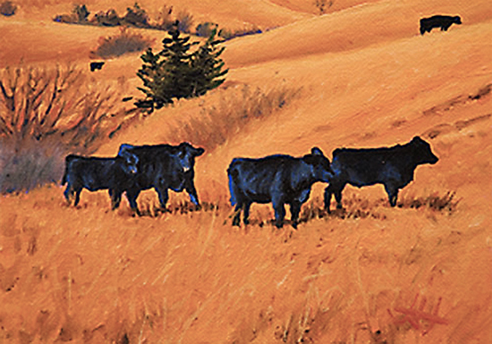 Spring in the Flint Hills, by John Hulsey