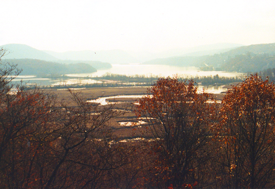 Photo of the View of Constitution Marsh from Boscobel by John Hulsey