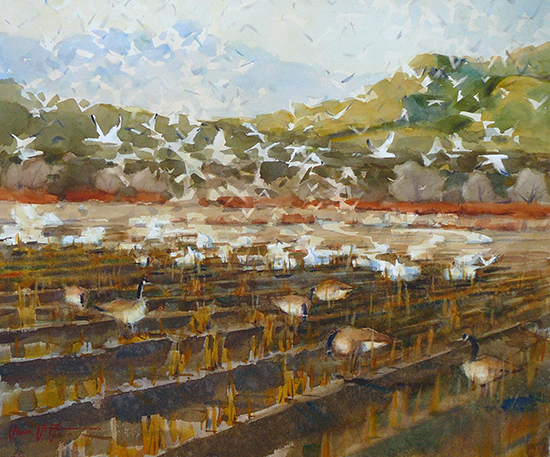 Watercolor Taking Flight The Bosque del Apache by Frank LaLumia