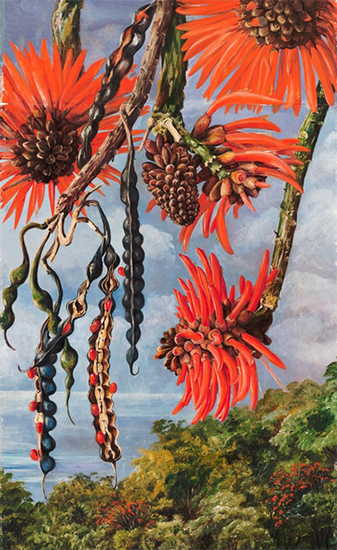 Coral Tree, 1880, Marianne North