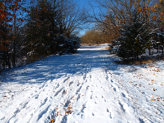 photo of country road in winter by John Hulsey