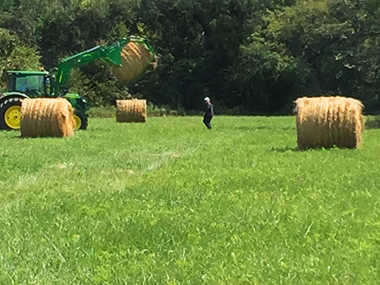tractor moving a hay bale