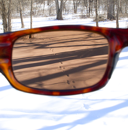 Snow Scene as Seen Through Tinted Sunglasses