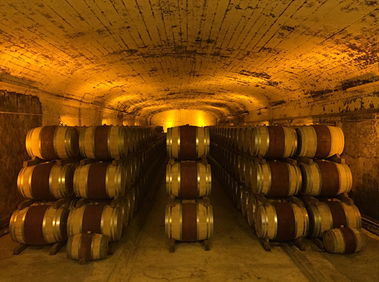 Photo of wine barrels at Mont Redon winery. © A. Trusty